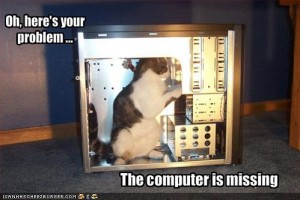 funny-pictures-cat-fixes-your-computer